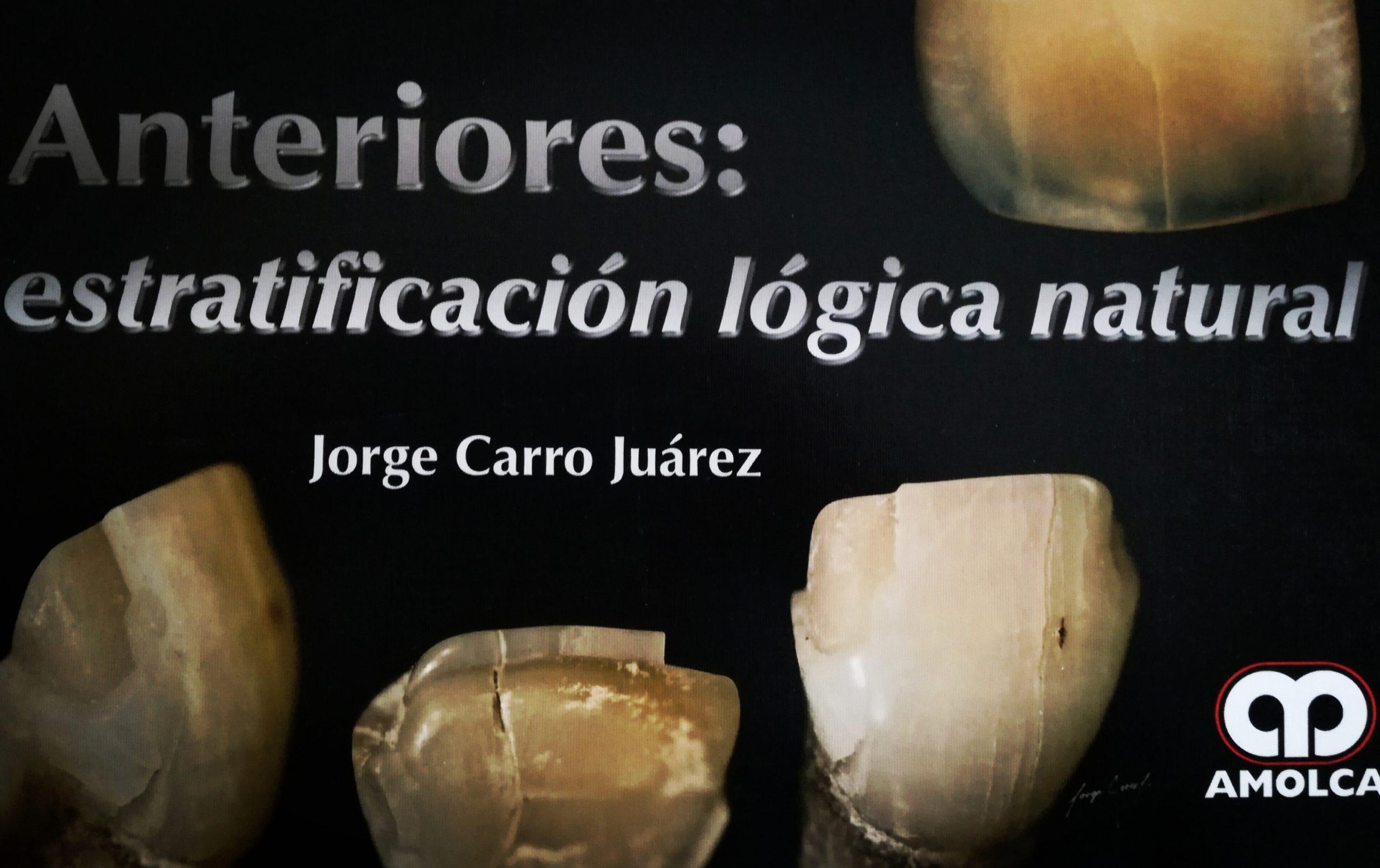 estratificación lógica natural